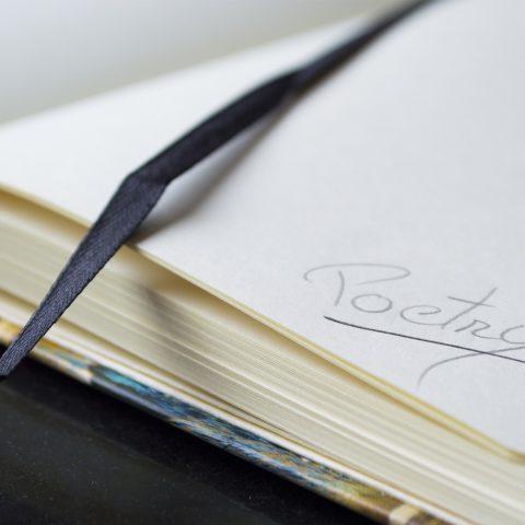 Zápisník, poezie